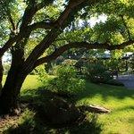 Pathway when entering Nikka Yuko Japanese Gardens