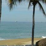 la hermosa vista de los barcos que son el principal atractivo de Manzanillo por su puerto cercan