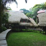 Photo de Jamu Lodge