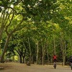Parque de Sant Salvador