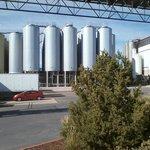 Grain & hops bins outside