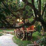 Espacios de Jardines