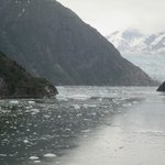 Icebergs float in the water with Sawyer Glacier in the background.
