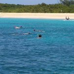 Swimming with Sea Turtles @ Deserted Island