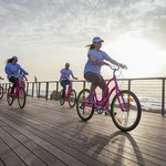 Bike Tours Tel Aviv Israel
