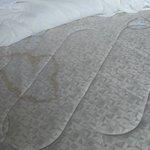 Feature room mattress