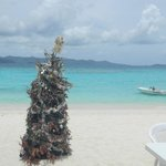 Christmas in Jost Van Dyke is every day!