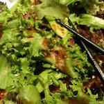Duck salat