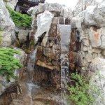 Waterfall at Dunedin Chinese Garden
