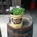 Pansy planter outside restaurant