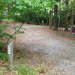 Camp Site D11