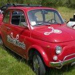 Fiat 500's