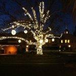 """""""Christmas tree"""" all lit up"""