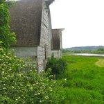 Nisqually barns