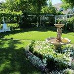 a partial garden view