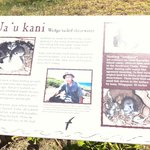 If you are lucky you will meet Isao.  He is passionate about the native birds.
