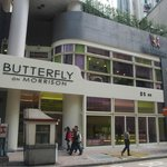 Butterfly on Morrison - Hotel Entrance