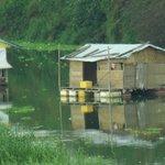 橋上から見られる川に浮かぶ家?