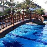Bridge on the pool