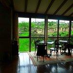 Salón de la casa con vistas a los viñedos