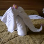 Occasionally, the fresh towels were like sculptures!