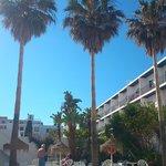 Poolside Mar Y Huerta