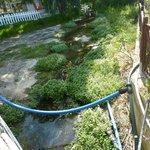 Vue de l'infect ruisseau à rats ( prise du pont)