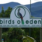 Birds of Eden