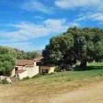 Photo of Agriturismo Candela
