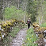 Local hiking