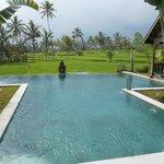 vue piscine / rizière