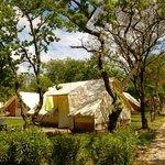lodges toile / tente