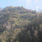 Funchal - La funivia - Visione dalla cabina