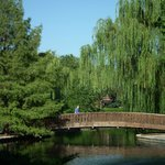 This bridge is at the south end of the lake.  Just a short stroll from the Rose Garden.