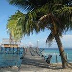 Roach Reef Resorts