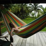 Can't get enough of the hammocks
