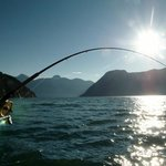 Campbell River chinook fishing