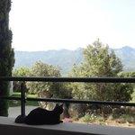 Vue depuis le balcon de A Machja