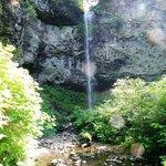 Pheasant Creek Falls Hiking Trail