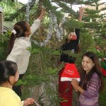Decorating the christmas tree in the hotel garden