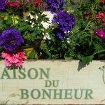 Gîte Alsacien à Ribeauvillé = Maison du Bonheur !