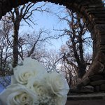 Moon Gate for your elopement ceremony