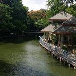 Very nice lake in the zoo
