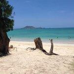 #1 beach on Oahu
