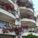 Balkony w kwiatach