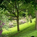Grounds of Dunham Massey (10 min walk)