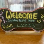 Even the pets are very welcome at this hotel!