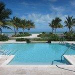 Gorgeous Pool overlooking the Atlantic Ocean