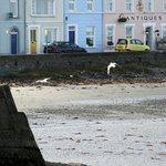 Donaghadee sea front