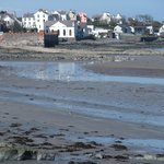 Donaghadee harbour at low tide